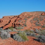 Owen's Loop trail in St George Utah